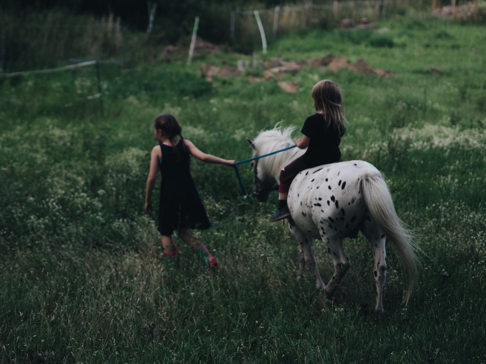 evafedeveka_photographer_photography_meadow_children_pony_summer